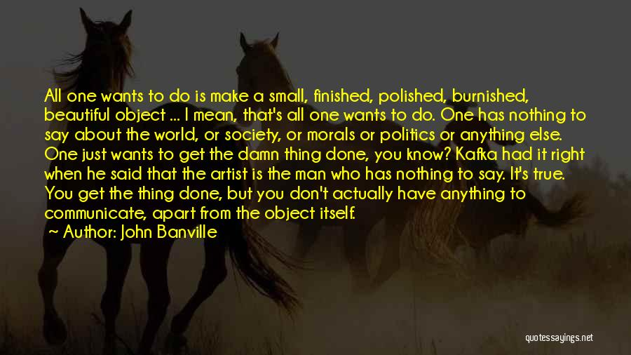 Anything He Wants Quotes By John Banville