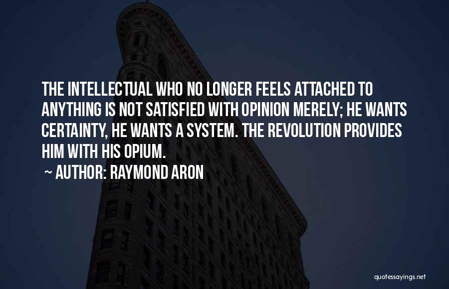 Anything He Wants Quotes By Raymond Aron