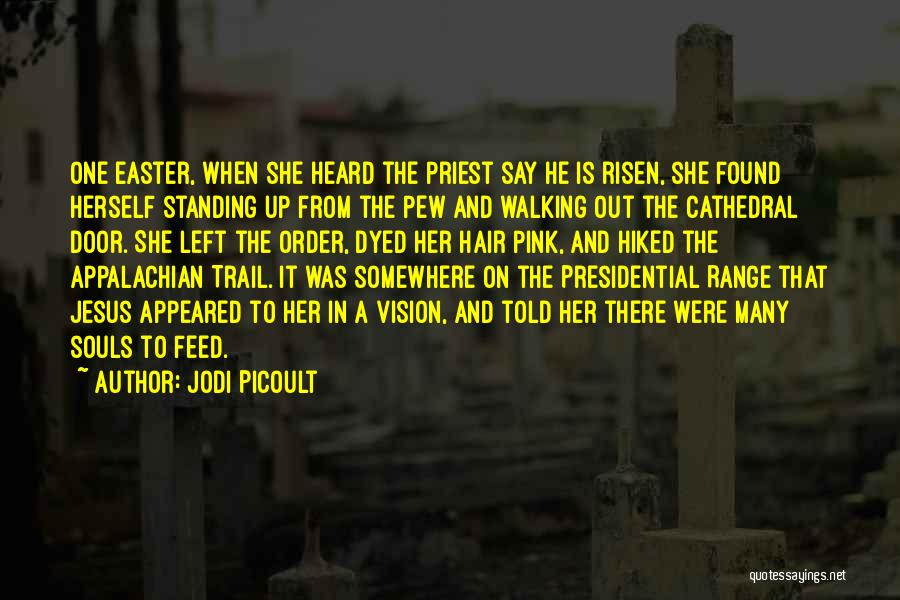 Appalachian Quotes By Jodi Picoult