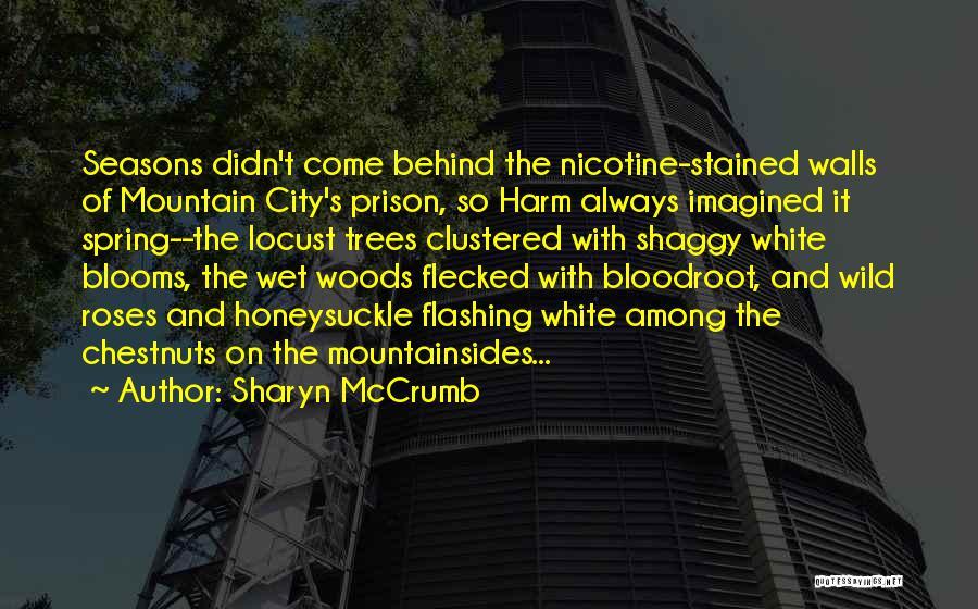 Appalachian Quotes By Sharyn McCrumb