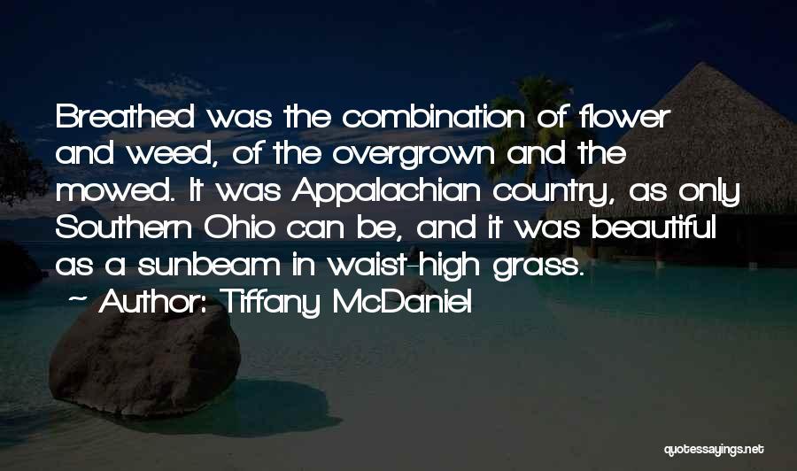 Appalachian Quotes By Tiffany McDaniel