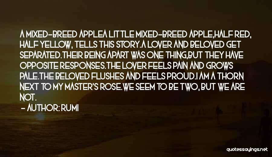Apple Quotes By Rumi