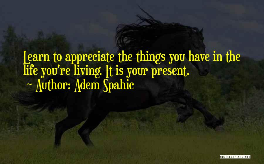 Appreciate Things In Life Quotes By Adem Spahic