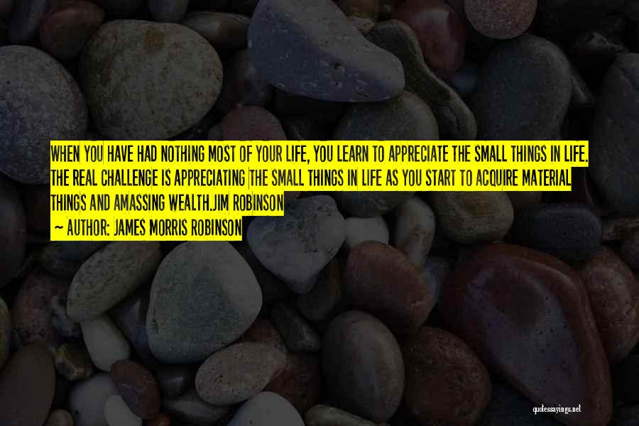Appreciate Things In Life Quotes By James Morris Robinson
