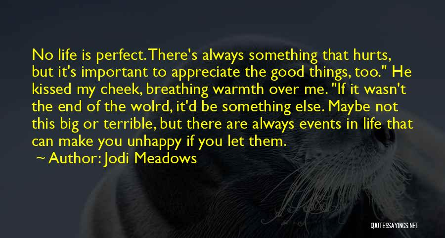 Appreciate Things In Life Quotes By Jodi Meadows