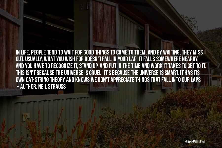 Appreciate Things In Life Quotes By Neil Strauss