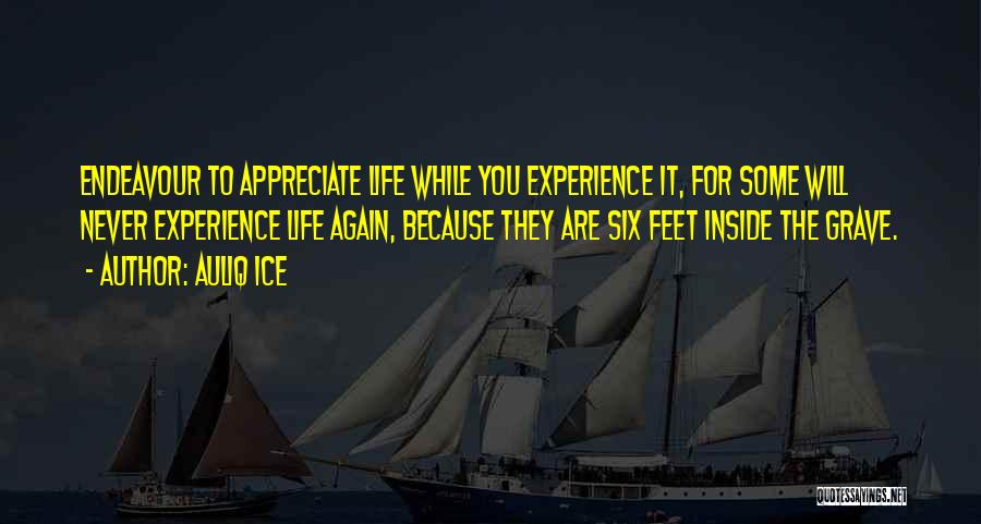 Appreciating What You Have Quotes By Auliq Ice