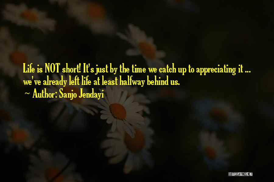 Appreciating What You Have Quotes By Sanjo Jendayi