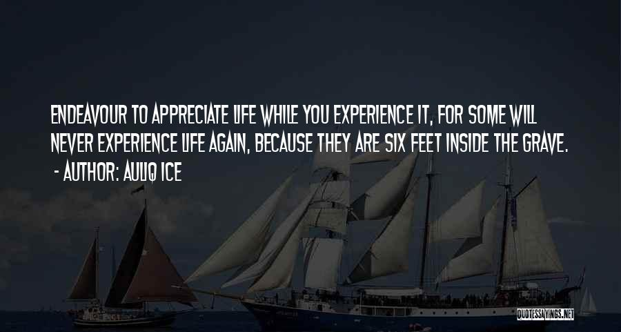 Appreciating Your Life Quotes By Auliq Ice