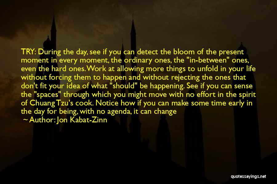 Appreciating Your Life Quotes By Jon Kabat-Zinn