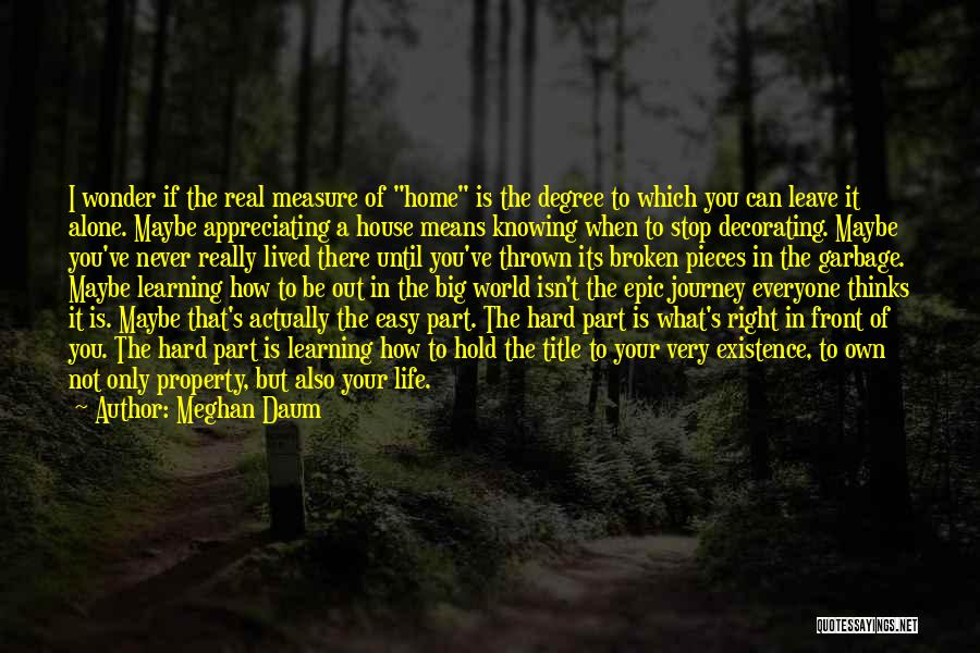 Appreciating Your Life Quotes By Meghan Daum