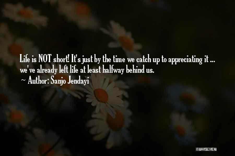 Appreciating Your Life Quotes By Sanjo Jendayi