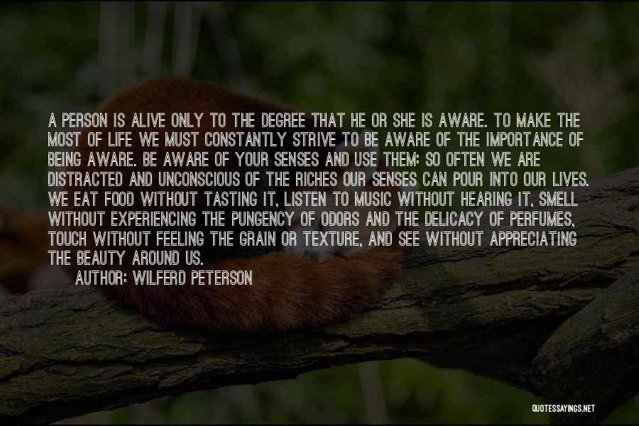 Appreciating Your Life Quotes By Wilferd Peterson