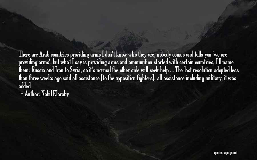 Arab Countries Quotes By Nabil Elaraby