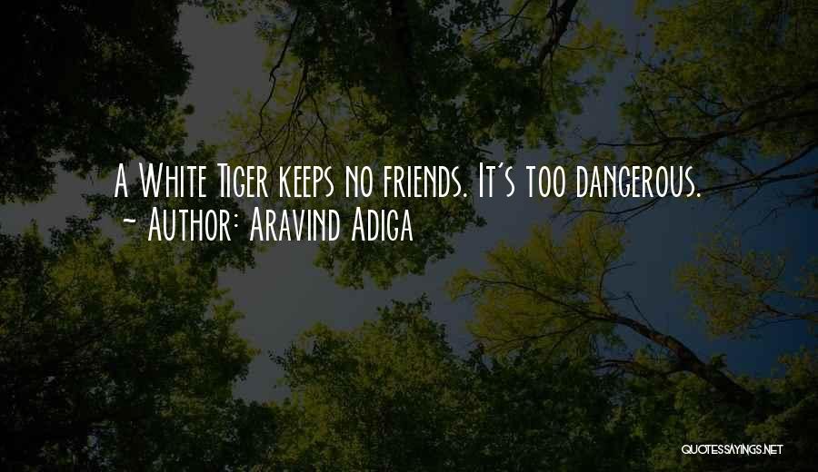 Aravind Adiga Quotes 1910846