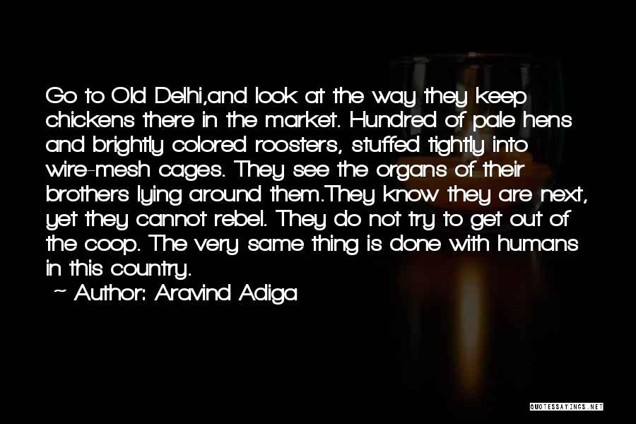 Aravind Adiga Quotes 200330