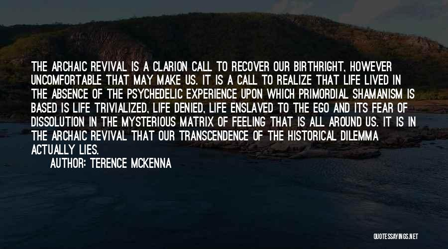 Archaic Revival Quotes By Terence McKenna