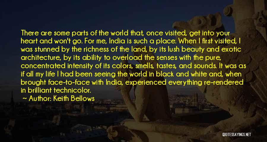 Architecture And The Senses Quotes By Keith Bellows
