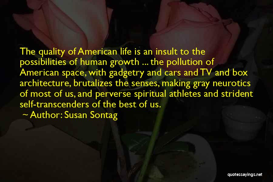 Architecture And The Senses Quotes By Susan Sontag