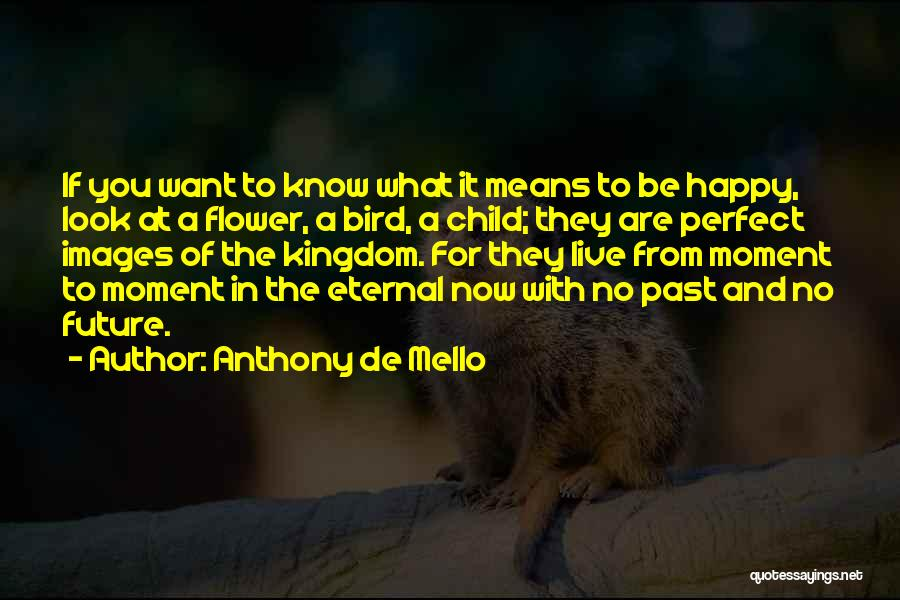Are You Happy Quotes By Anthony De Mello