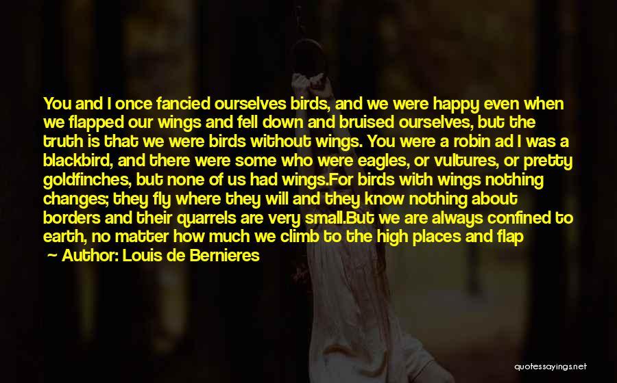 Are You Happy Quotes By Louis De Bernieres