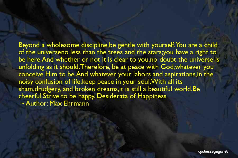 Are You Happy With Your Life Quotes By Max Ehrmann