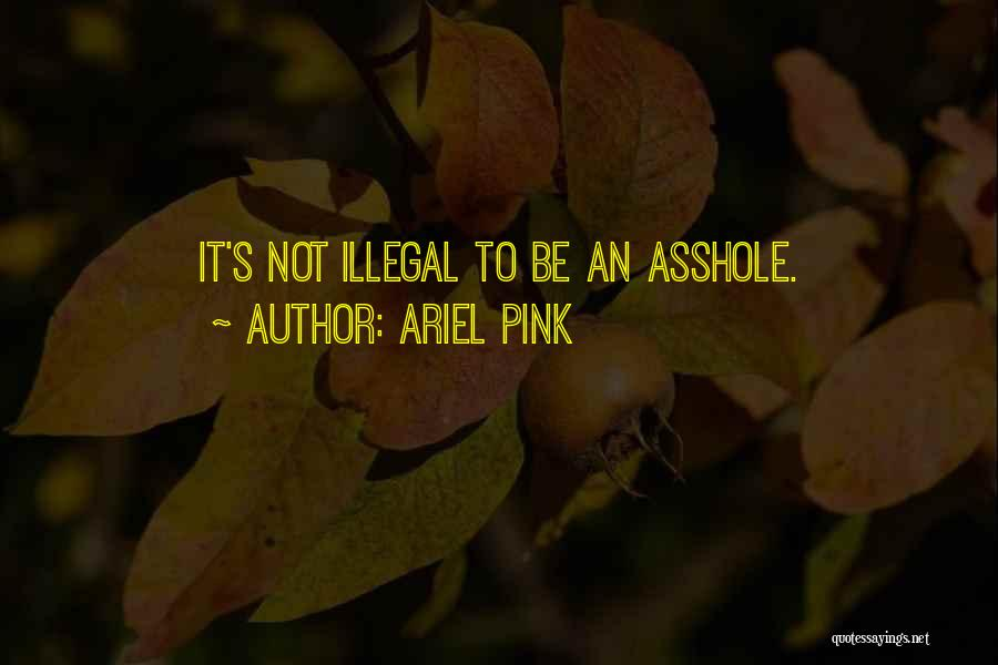 Ariel Pink Quotes 1343176