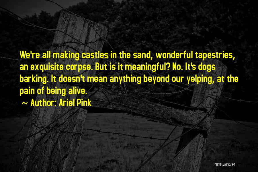 Ariel Pink Quotes 1579038