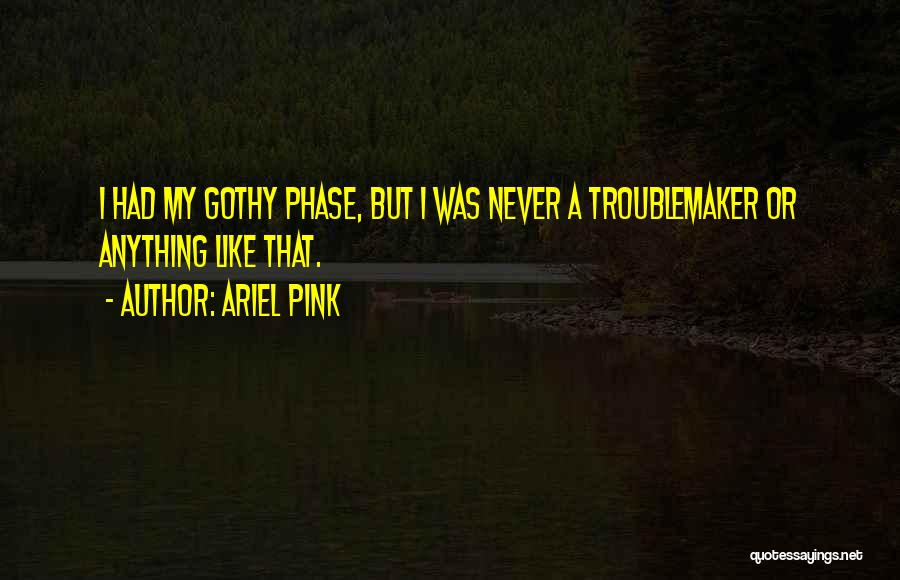 Ariel Pink Quotes 1774798