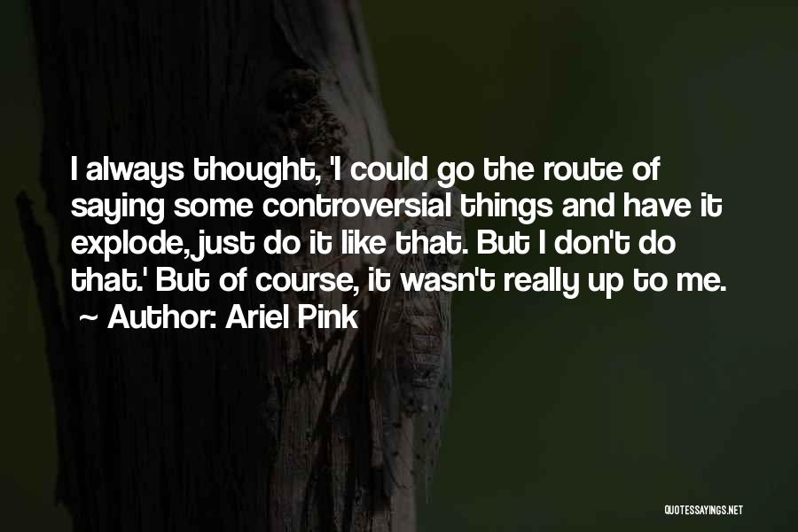 Ariel Pink Quotes 2232529