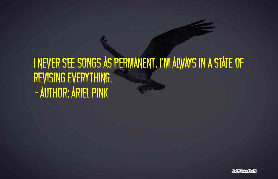 Ariel Pink Quotes 251706