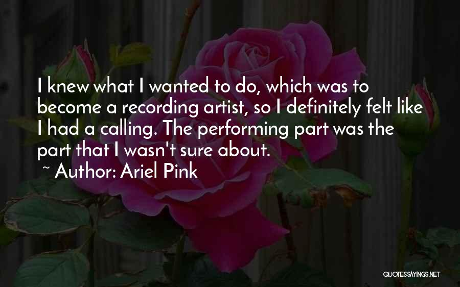 Ariel Pink Quotes 276947