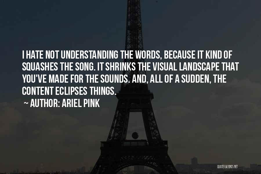 Ariel Pink Quotes 564607
