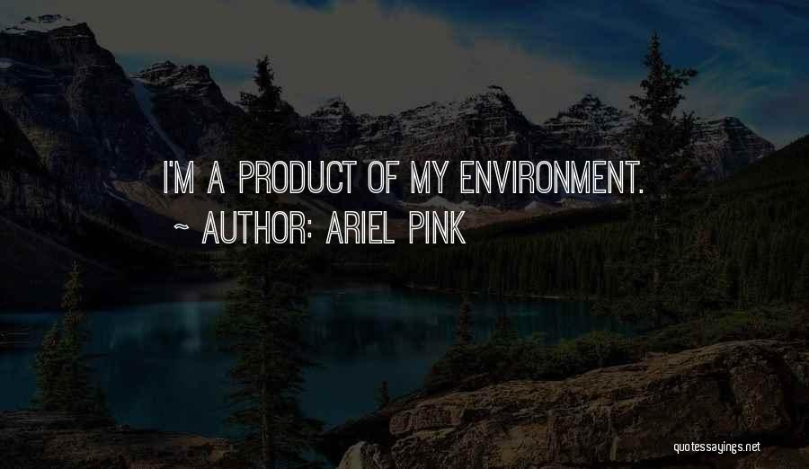 Ariel Pink Quotes 728639