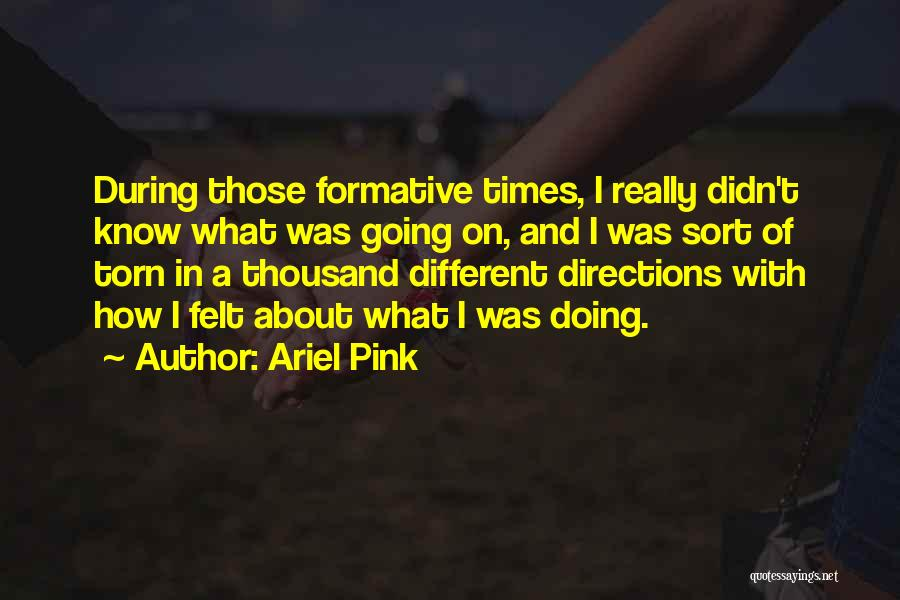 Ariel Pink Quotes 796300