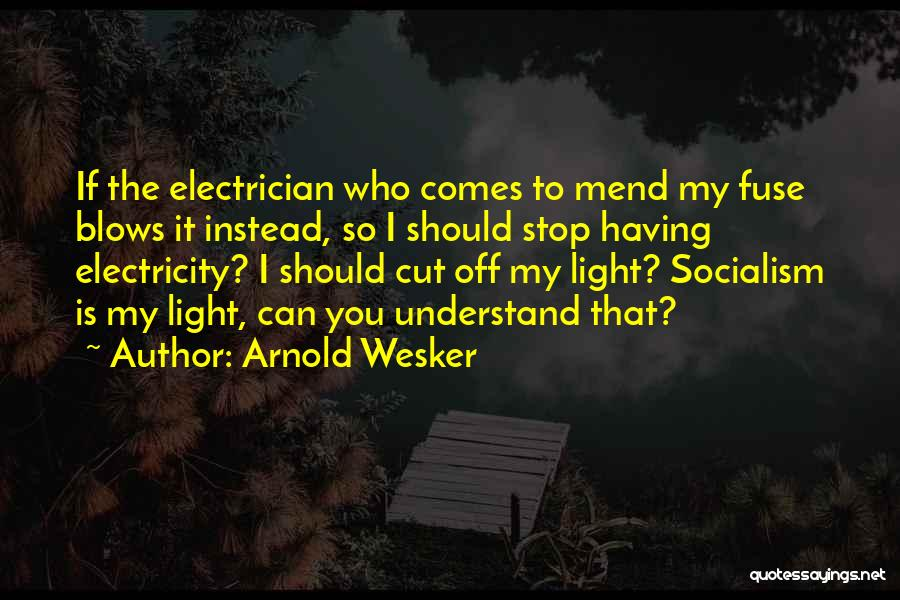 Arnold Quotes By Arnold Wesker