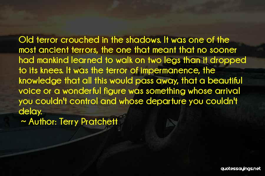 Arrival And Departure Quotes By Terry Pratchett
