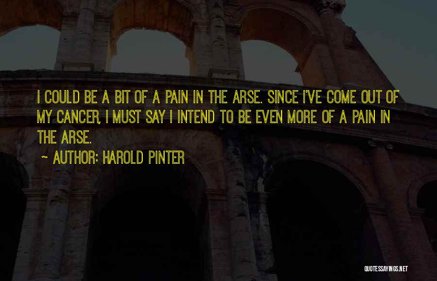 Arse Quotes By Harold Pinter
