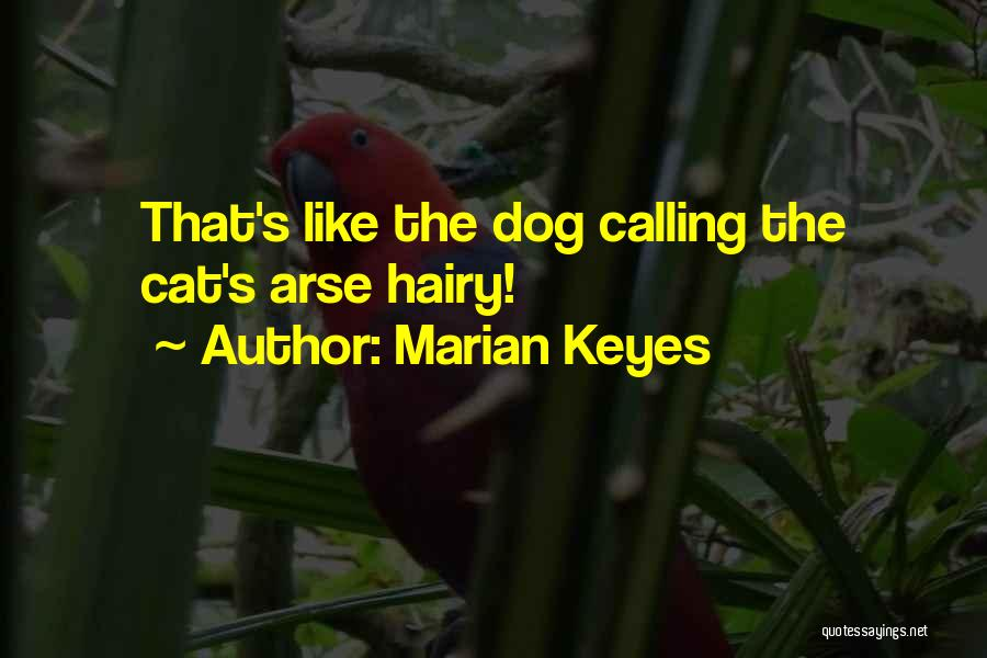 Arse Quotes By Marian Keyes