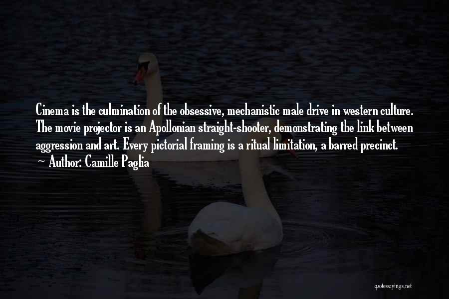Art Culture Quotes By Camille Paglia