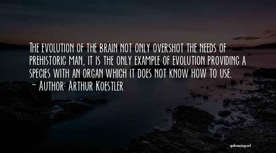 Arthur Koestler Quotes 1103472