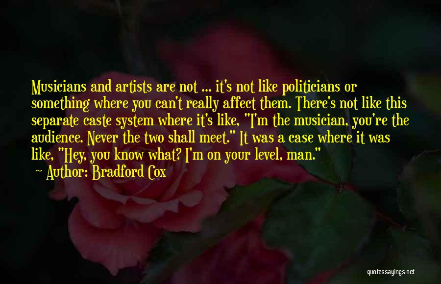 Artist And Audience Quotes By Bradford Cox