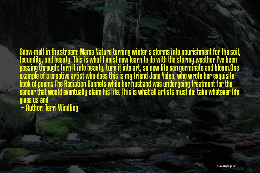 Artists And Nature Quotes By Terri Windling