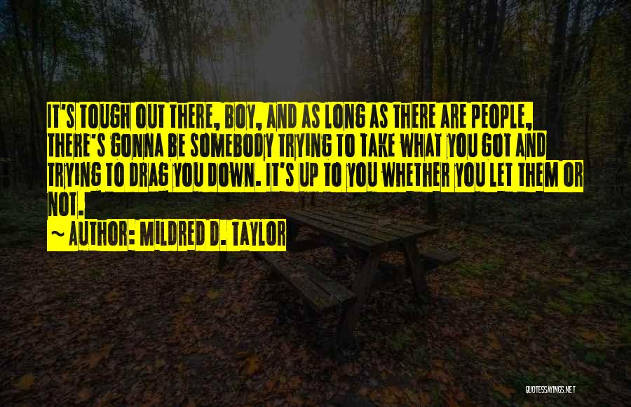 As Long Quotes By Mildred D. Taylor