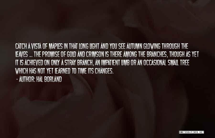 As Time Changes Quotes By Hal Borland