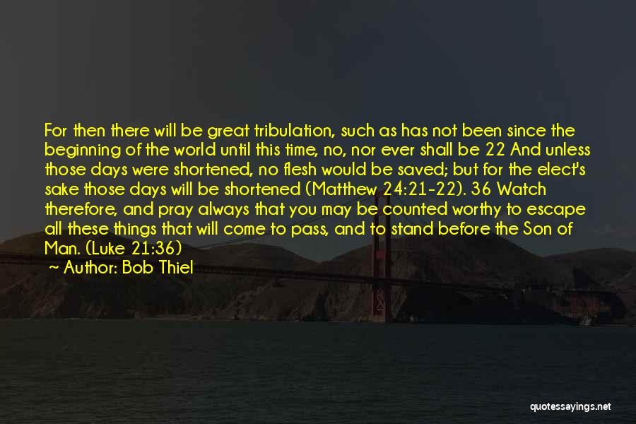 As Time Quotes By Bob Thiel