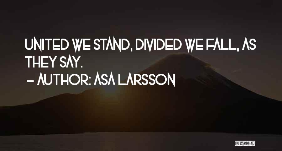 Asa Larsson Quotes 315596