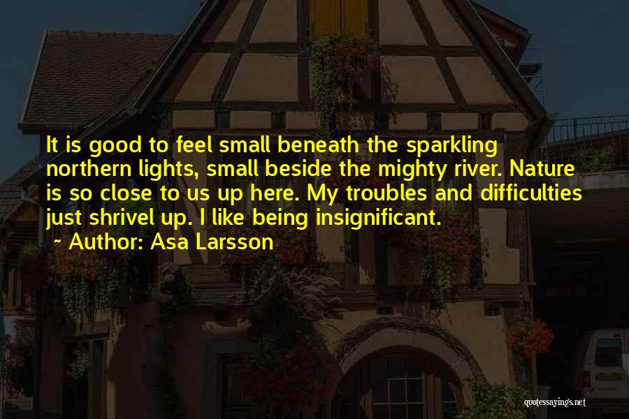 Asa Larsson Quotes 605311