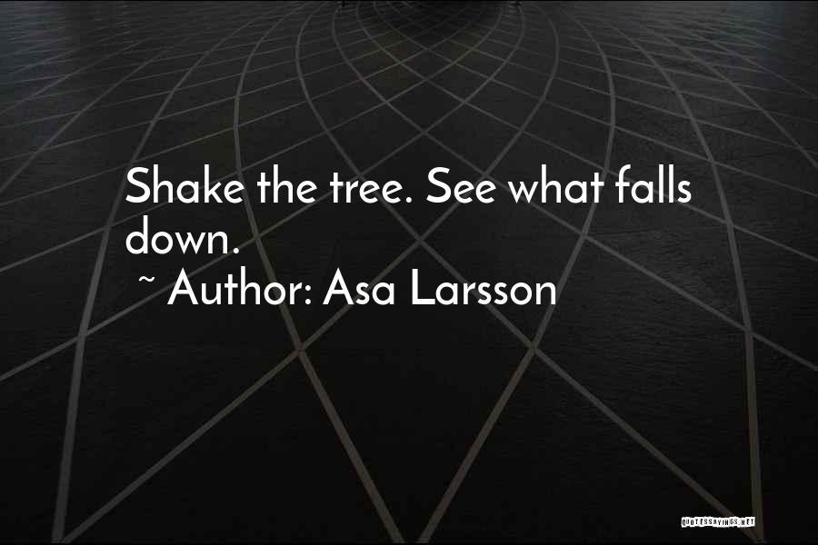 Asa Larsson Quotes 810958