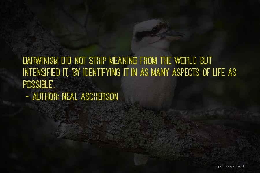 Aspects Quotes By Neal Ascherson